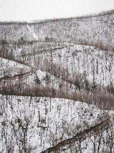 дзен, Донецк, фотография